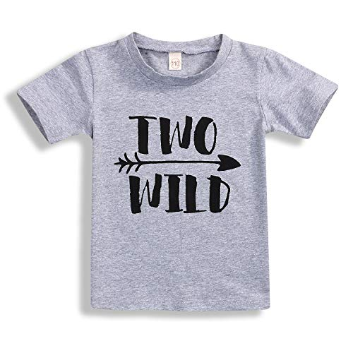 Second Birthday Party Shirt Two Wild Top 2nd Birthday Baby Little Boy Blouse Tee Clothes (2 T, Gray)]()