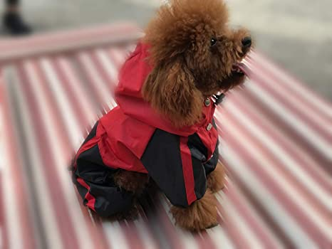 Amazon.com : lovelonglong Pet Apparel Large Dog Clothing Raincoat Pet Clothes Rain Coat For Big Large Dogs Red Green Waterproof (L-M, Red) : Pet Supplies