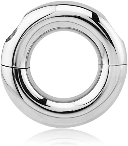 Dynamique Zodiac Sign Ring Top Stainless Steel Ear Tunnels