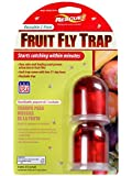 Rescue Reusable Fruit Fly Trap, 2-Pack