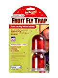RESCUE! FFTR2 Non-Toxic Reusable Fruit Fly Trap, 2 Pack