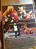 WWF Collectors Edition: Best of Heroes of the Squared Circle