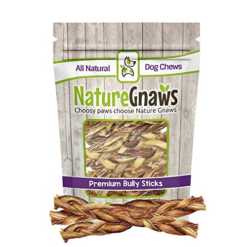 Nature Gnaws Braided Bully Sticks 11-12″ (10 Pack) – 100% Natural Grass-Fed Free-Range Premium Beef Dog Chews Review