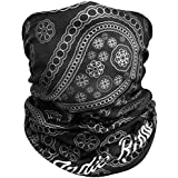 Paisley Outdoor Motorcycle Face Mask By Indie Ridge - Ski Snowboard Mask Seamless Headwear