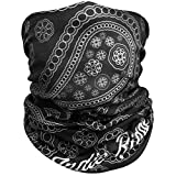 Paisley Outdoor Face Mask By Indie Ridge Microfiber Polyester Multifunctional Seamless Headwear for Motorcycle Hiking Cycling Ski Snowboard