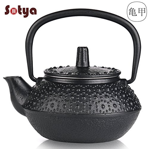 Cast Iron Teapot, Japanese Tetsubin Iron Tea Kettle Small Dot Hobnail Iron Teapot with Stainless Steel Infuser (300ml/10oz)