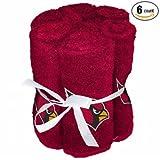 NFL Arizona Cardinals 6 Pack Washcloth Set