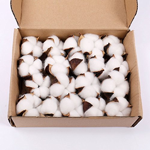 Darget Cotton Balls Decor - 20 Pieces for Wreath Decor Cotton Bolls (Balls) Made of Real Natural Cotton Great for Crafting Farmhouse Style (Christmas Ball Wreath)