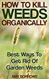 #6: How to Kill Weeds Organically: Best Ways To Get Rid Of Garden Weeds: (Gardening for Beginners, Organic Gardening)