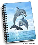 Dolphin Jumpers - 4' x 6' 3D Notebook - Artgame