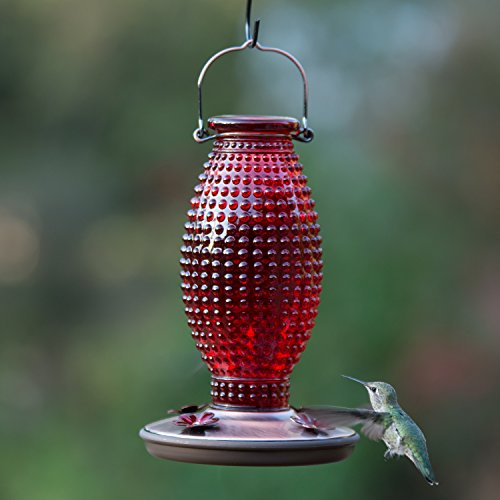 Perky-Pet Red Hobnail Vintage Glass Hummingbird Feeder 8130-2 by Perky-Pet (Image #3)