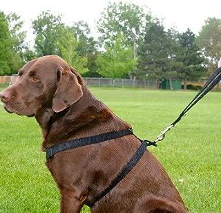 """product image for Hemp Basic Canvas Dog Harness (1"""" Medium, Black)"""