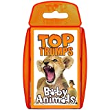 Baby Animals Card Game