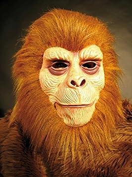 El mono con pelo mono y máscara de naranja-Utan máscara de la primacía de