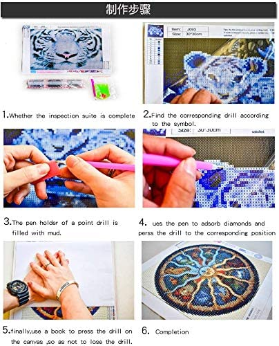 Kemladio Kit de broderie diamant 5D /à faire soi-m/ême Kit de broderie diamant /à faire soi-m/ême Deux petits oiseaux bleus Pour adultes et enfants