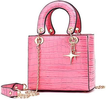 fixiyue Bolso pequeño Bolso de Mujer Chao Han versión de la Bolsa Inclinada 100 Bolso de Hombro de Moda Que Lleva Princess Bag. Color Curry. Rosa.