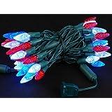 Novelty Lights 70 Light C6 LED Christmas Mini Light Set, Commercial Grade Outdoor String Lights, Red/Pure White/Blue, Green Wire, 24 Feet