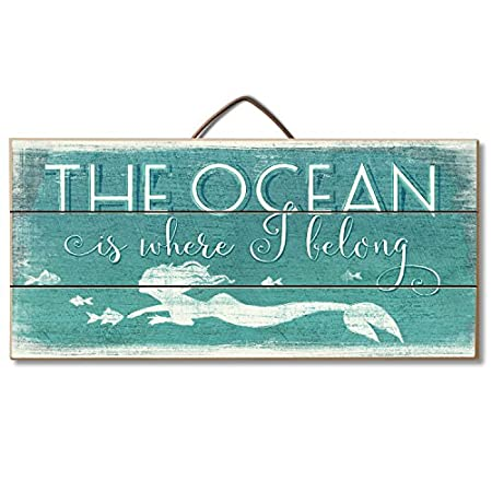 51ncKL9g3sL._SS450_ The Best Wooden Beach Signs You Can Buy