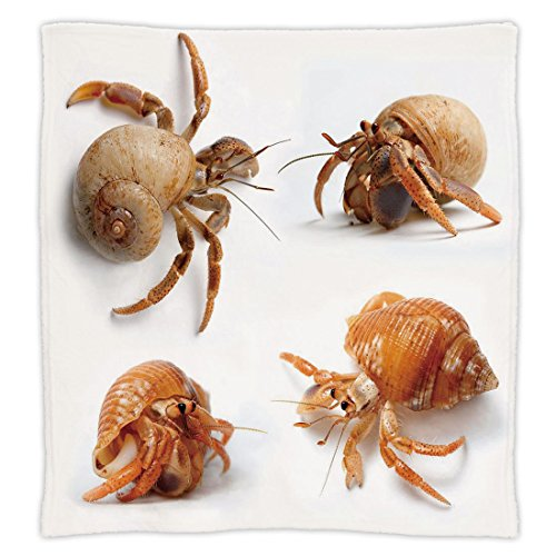 - iPrint Super Soft Throw Blanket Custom Design Cozy Fleece Blanket,Crabs Decor,Sea Animals Theme Set of Hermit Crabs from Caribbean Sea Digital Print,Marigold and White,Perfect for Couch Sofa or Bed