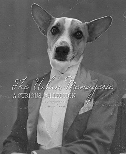 [Anthropomorphic Portrait, Corgi Dog Art Print, Multiple Sizes Available, Unframed] (Inanimate Object Costume)