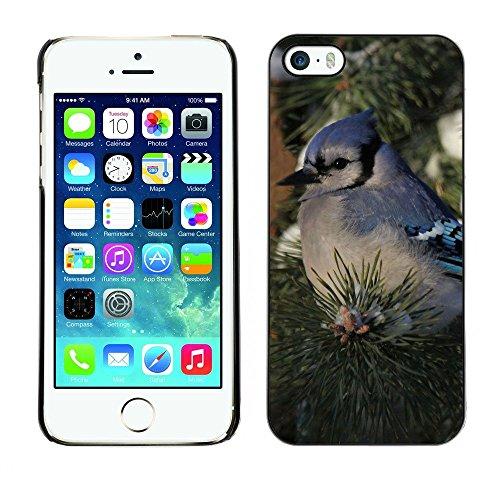 Hülle Case Schutzhülle Cover Premium Case // F00002345 draussen // Apple iPhone 5 5S 5G