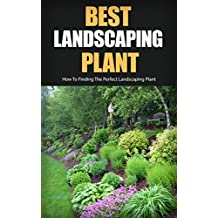 Best Landscaping Plant: How to Finding the Perfect Landscaping Plant