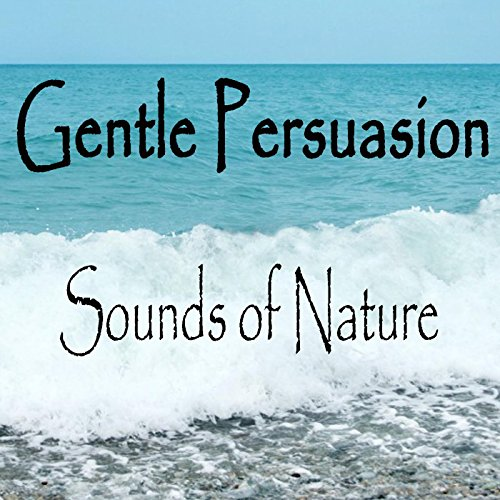 An introduction to the analysis of gentle persuasion