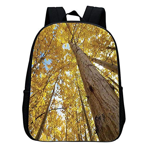 Forest Home Decor Multifunction School Bag,Up View of Fall Aspen Tree Leaves in Fade Tone Autumn Season Photo Image for Boys And Girls,9