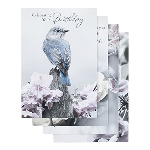 Birthday - Inspirational Boxed Cards - Touch of Color]()