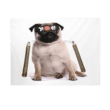 Amazon.com : Pug Photography Background, Ninja Puppy with ...