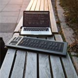 ROLI | Seaboard - Expressive MIDI Keyboard