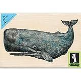 Inkadinkado Tim Coffey Wood Stamp, Sperm Whale