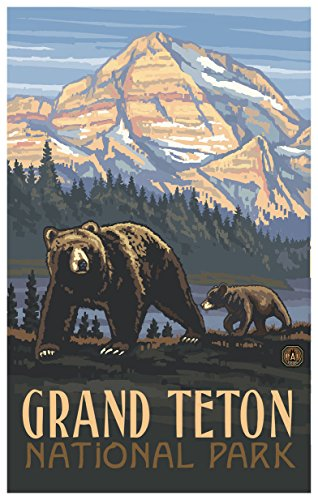 Grand Teton National Park Rockies Grizzly Bears Travel Art Print Poster by Paul A. Lanquist (12
