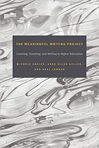 Amazon the meaningful writing project learning teaching and the meaningful writing project learning teaching and writing in higher education 1st edition publicscrutiny Images