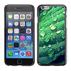 """Hot Style Cell Phone PC Hard Case Cover // M00102516 nature green // Apple iPhone 6 4.7"""""""