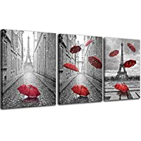 NAN Wind 3 Pcs Modern Giclee Canvas Black and White with Red Theme Wall Art Landscape Wall Decor Paintings on Canvas Stretched and Framed Ready to Hang for Home Decor