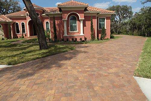 1 Gallon Dominator NG+, No Gloss Paver Sealer (Wet Look) - Commercial Grade, Water Based, Color Enhancing, Easy Application by BLACK DIAMOND COATINGS INC. (Image #3)