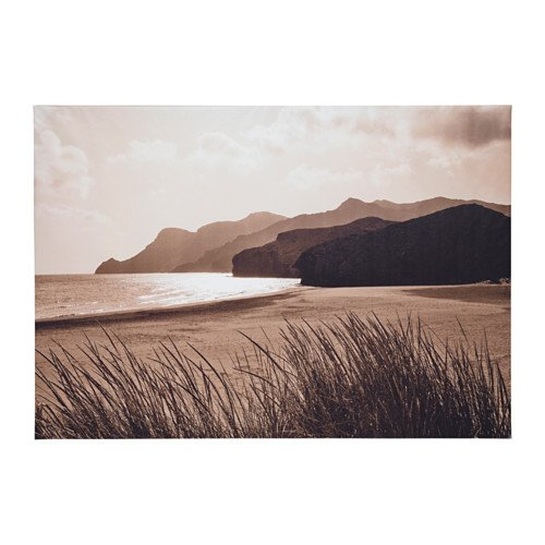 New Ikea Premiar Sea Grass Canvas Print with Frame 55 X 78 Inches