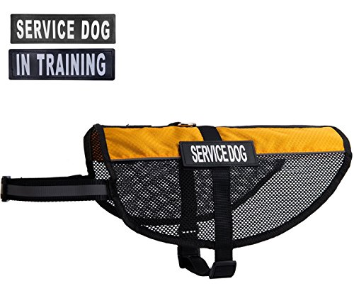BINGPET Mesh Reflective Service Dog Vest Cool Comfort Harness with 2 Free Removable SERVICE DOG and 2 IN TRAINING Patches Orange L