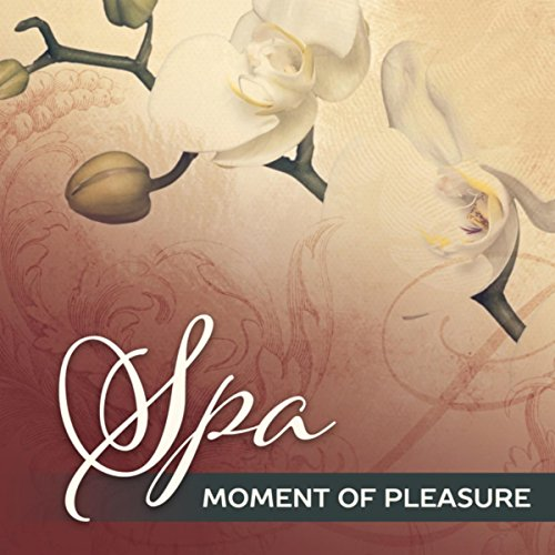 Spa Moment of Pleasure