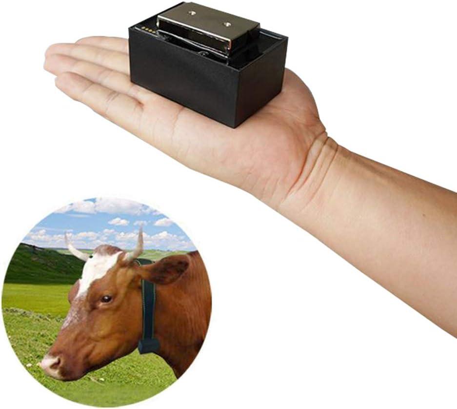 GPS Localizador Impermeable Oveja Vaca Caballo Animal Collar GPRS LBS WiFi Dispositivo De Seguimiento De Mascotas En Tiempo Real Valla Electronica Alarma Automatica