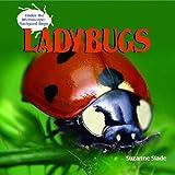 Ladybugs, Suzanne Slade, 1404238182