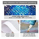 NEILDEN 5D Full Drill Diamond Painting Kit, DIY
