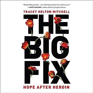 The Big Fix Audiobook