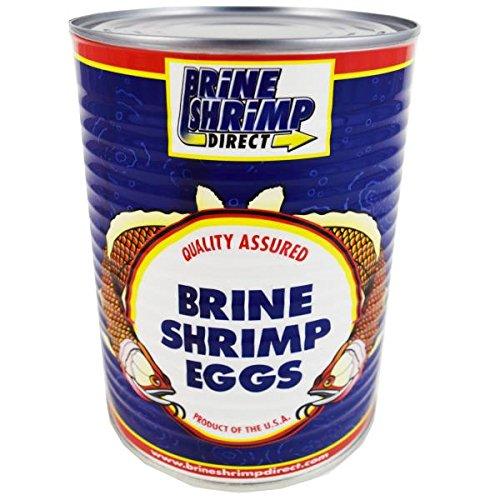 - Premium Grade Brine Shrimp Eggs ( 90%), 16 oz.