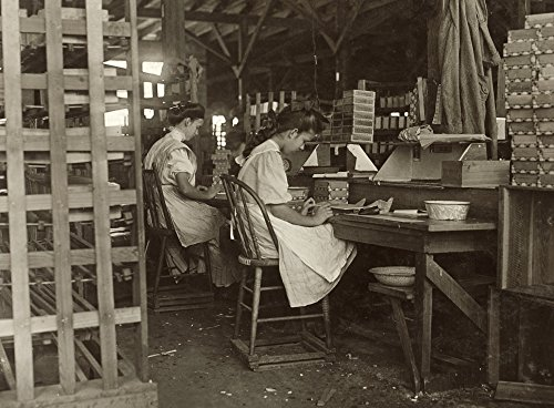 Cigar Box Factory 1909 Nyoung Girls Working At The Tampa Cigar Box Factory In Tampa Florida Photograph By Lewis Hine January 1909 Poster Print by (18 x 24)