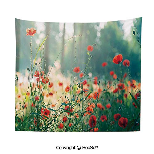 Durable Washable and Reusable tapestry wall hanging carpet 59x79in,Wild Red Poppy Flowers Field Summertime Sunbeams Gardening Bedding Plants,Red Green Yellow Comfy and No Strange Odor home decor