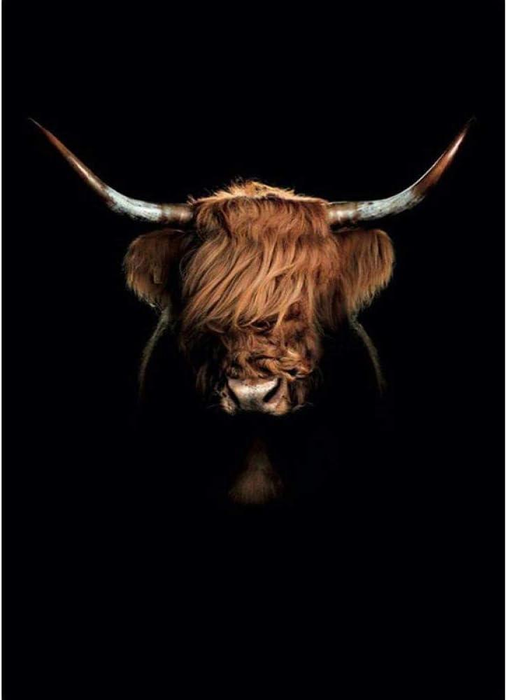 LLXPDZ Pintura Digital De Bricolaje Blanco Y Negro Highland Cow Wall Art Abstract Canvas Painting Minimalism Esponjoso Ganado Ganado Imprimir Animal Vaca Imprimible Poster-40x50cm
