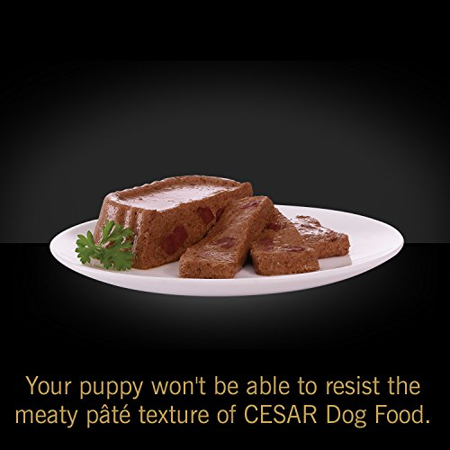 Pictures of Cesar Canine Cuisine Puppy Wet Dog Food 10114259 8