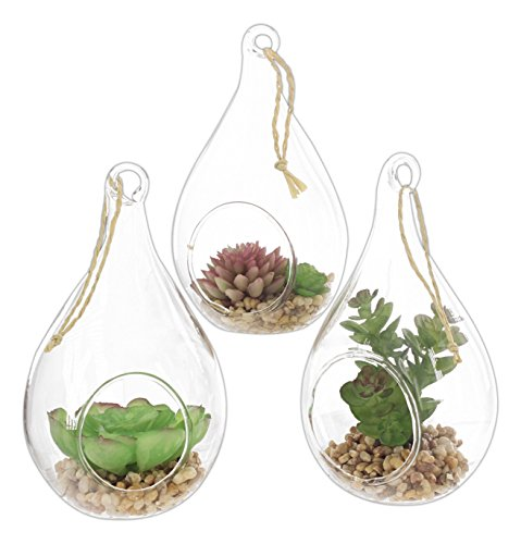 Set of 3 Flora Bunda Artificial Succulents in 5.5
